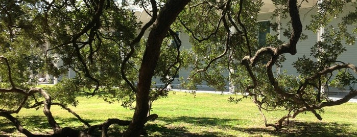 Menil Park is one of Parks.