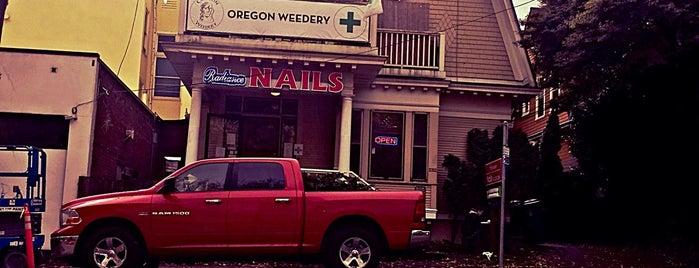 Oregon Weedery is one of Andy : понравившиеся места.