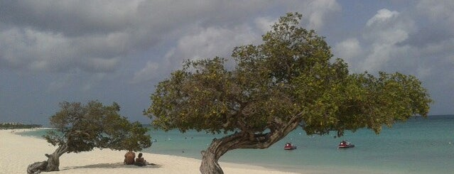 Eagle Beach is one of Aruba.