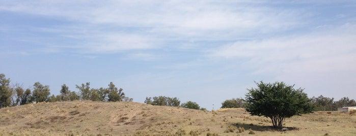 Zona Arqueológica El Grillo is one of Sitios Arqueológicos en Jalisco.