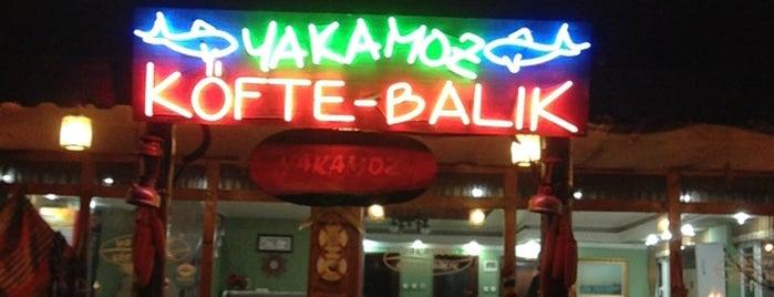 Yakamoz Köfte & Balık Lokantası is one of Orte, die Öznur gefallen.
