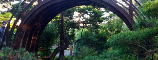 Japanese Tea Garden is one of SF special places.