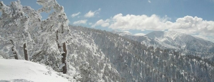 Mountain High Ski Resort (Mt High) is one of Angela : понравившиеся места.