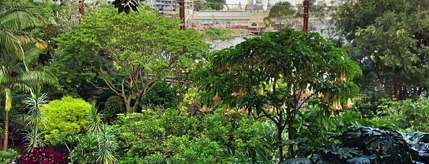 Wendy Whiteley's Secret Garden is one of Sydney.