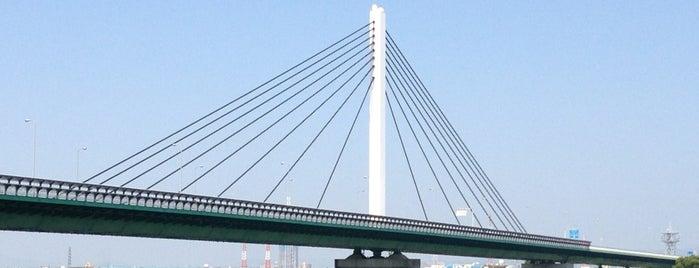 鳥飼仁和寺大橋有料道路 is one of 淀川探訪.