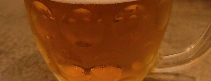 Triple Bottom Brewing is one of philadelphia.