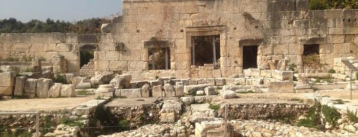 Roma Dönemi Agora Yapısı Ve Bizans Bazilikası is one of Locais salvos de Rabia.