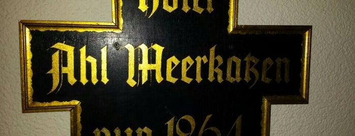 Hotel Ahl Meerkatzen is one of สถานที่ที่ Helena ถูกใจ.