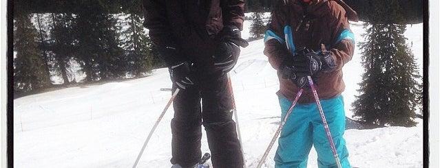 Skicross EC Grasgehren is one of MOTORDIALOG : понравившиеся места.