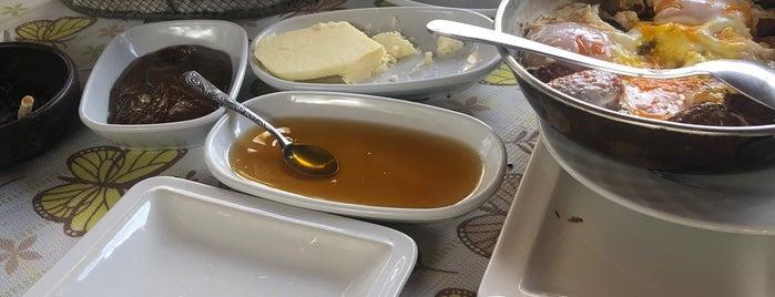 Etrim  Doğa Kahvaltı sofrası is one of Muğla.