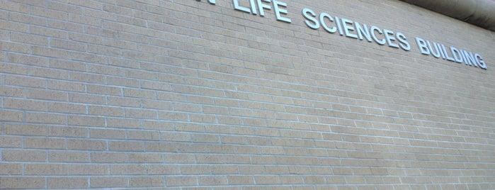 Olin Life Sciences Building is one of Orte, die Bayana gefallen.