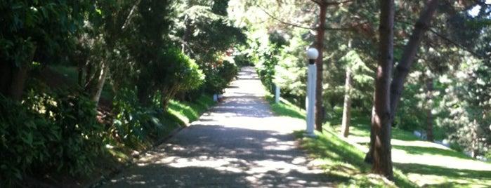 Alkent Yürüyüş Parkı is one of Baturalp : понравившиеся места.
