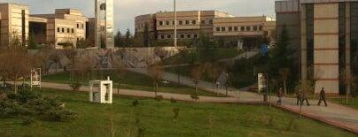 Kocaeli Üniversitesi KOÜ Mekanları
