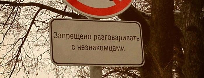 Patriarshiye Ponds is one of Романтические места Москвы.