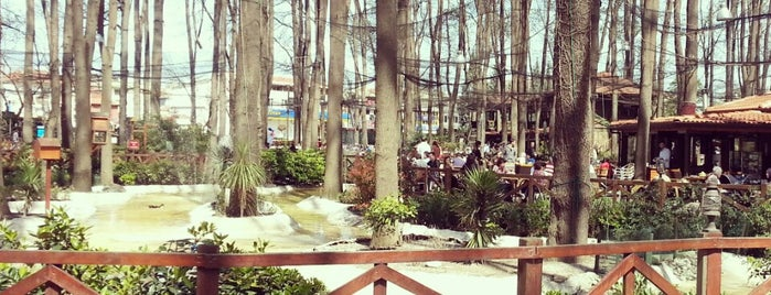 Orman Park is one of Favorites Café in Sakarya.