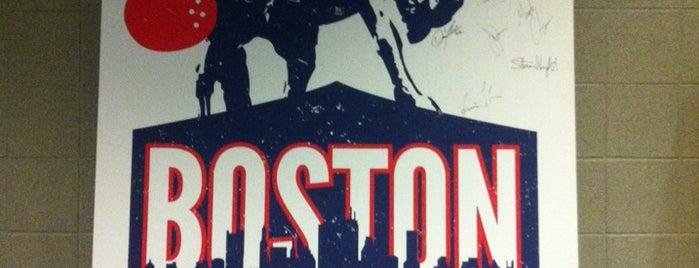 TD Garden is one of Sporting/Concert....