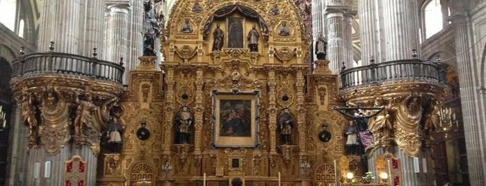 Catedral Metropolitana de la Asunción de María is one of DF.