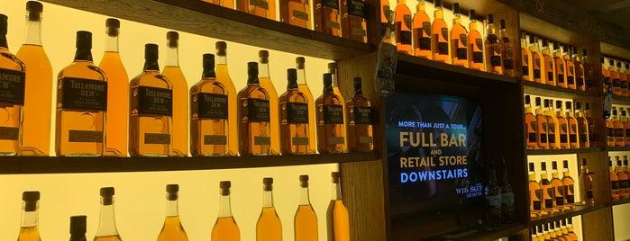 Irish Whiskey Museum is one of Dublin.