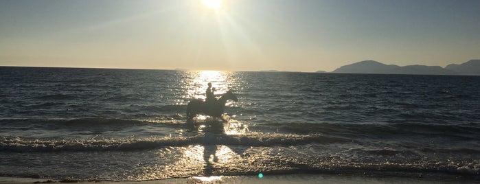 Mastichari Beach is one of Hüseyinさんのお気に入りスポット.