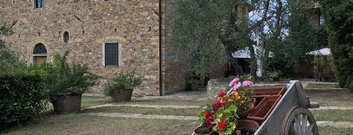 Fattoria di Vegi is one of Chianti Classico Producers.