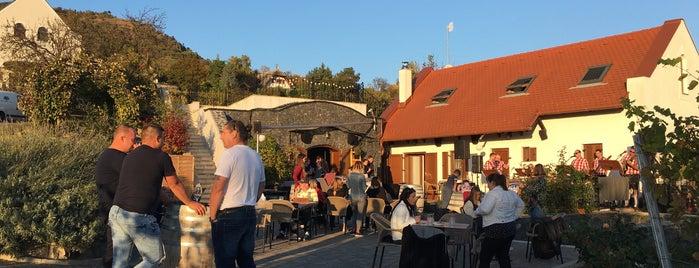Murci Nature Wine Bar is one of Balkans.