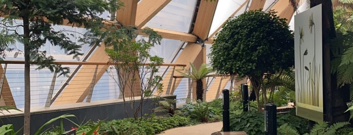 Crossrail Place Roof Garden is one of Alternative London.