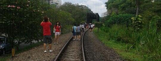 Rifle Range Road Railway Trackbed is one of The Rail Corridor.