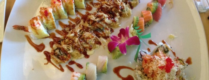 Asian Gourmet & Sushi Bar is one of Dinner Places.