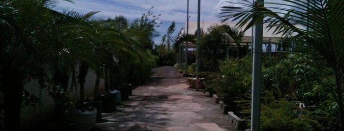 AF Garden Center is one of Gespeicherte Orte von Marcos.