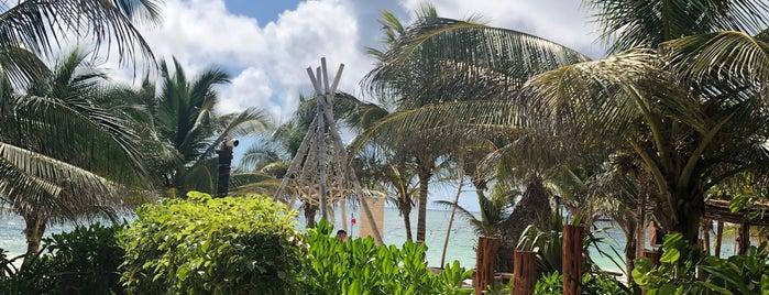 Mia Restaurant & Beach Club is one of YTCN.