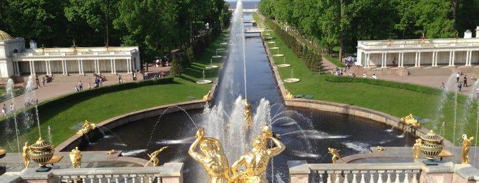 Top 5 palaces near St. Petersburg