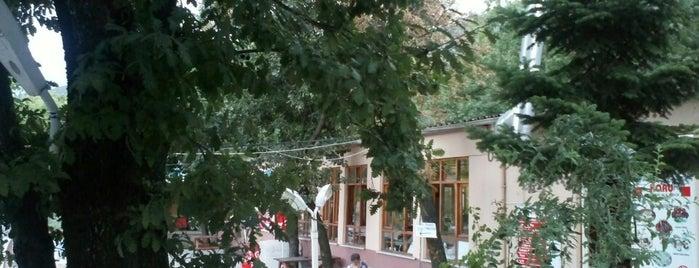 Hamamlıkızık Korusu Piknik Alanı is one of Lieux qui ont plu à Gunes.