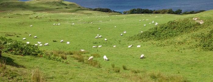 Glengorm Castle is one of Евгения 님이 저장한 장소.