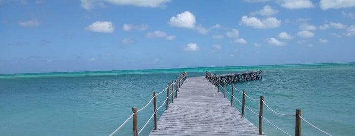 Isla de la Pasión is one of Bri 님이 좋아한 장소.