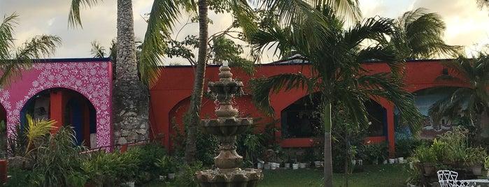 Casa Mission is one of Bri 님이 좋아한 장소.