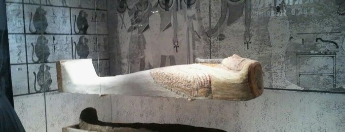 Museu Egipci de Barcelona - Fundació Arqueològica Clos is one of Museus.