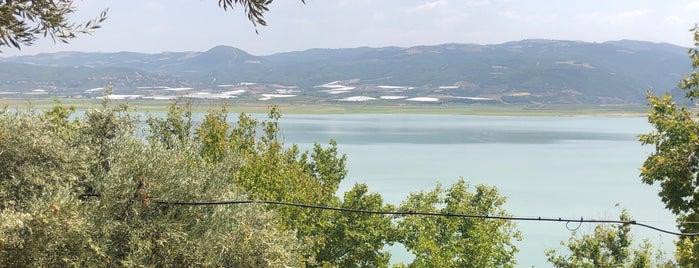 Afşar Baraji / Sosyal Tesisi is one of themaraton.