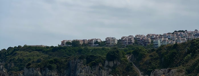 Robinson Beach is one of Posti che sono piaciuti a Deniz.
