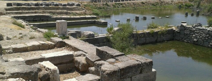 Letoon is one of ANCIENT LOCATIONS IN TURKEY.