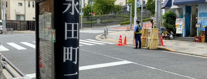 Nagatacho is one of Japan 🇯🇵.