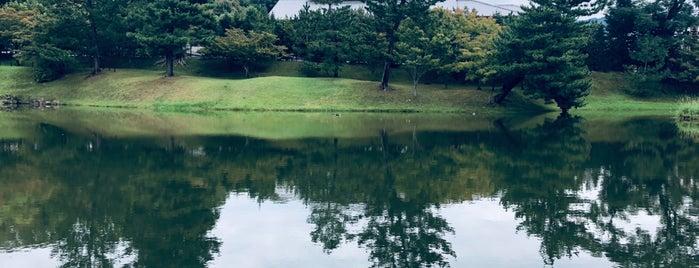 名勝旧大乗院庭園 is one of Posti che sono piaciuti a 商品レビュー専門.