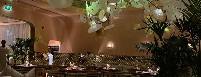 Flamingo Room By Tashas is one of Dubai.