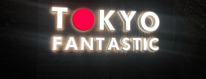 TOKYO FANTASTIC OMOTESANDO is one of japan.