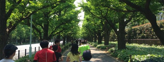 Meiji Jingu Gaien is one of Tokyo.