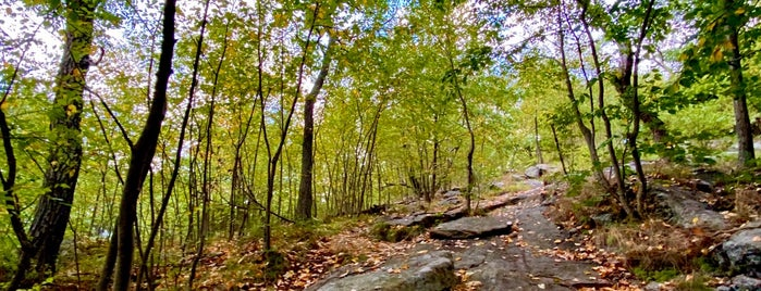 Harriman State Park is one of Parks & Recreation.
