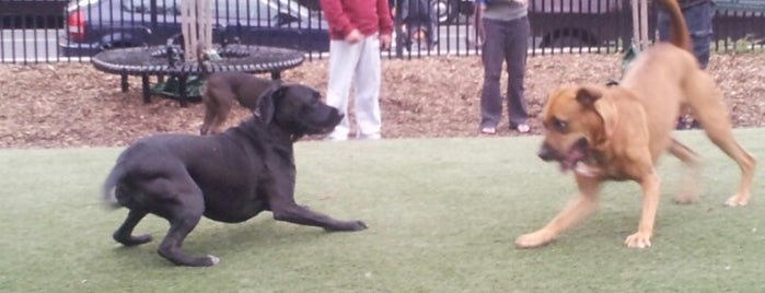 S Street Dog Park is one of To do in Washington DC with Ponyo.