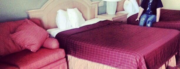 Metropolitan Resort Orlando is one of TRAVELING.