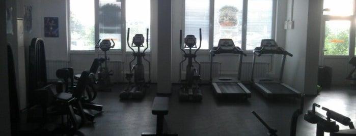 Bulldog Gym is one of Orte, die Andrey gefallen.
