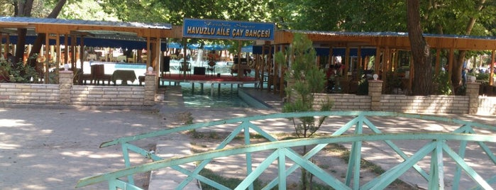 Havuzlu Park Erzincan is one of Locais curtidos por Can.