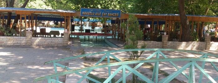 Havuzlu Park Erzincan is one of Can : понравившиеся места.